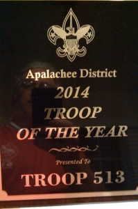 Troop of the year